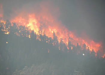 Scanning the Future of Wildfire