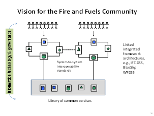 Vision for the Fire and Fuels Community